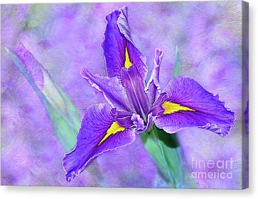 Canvas Print featuring the photograph Vibrant Iris On Purple Bokeh By Kaye Menner by Kaye Menner