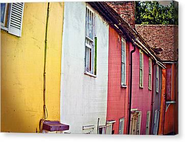 Vibrant Living Canvas Print by Tom Gowanlock