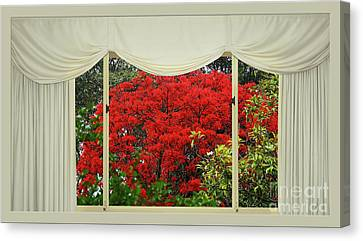 Vibrant Red Blossoms Window View By Kaye Menner Canvas Print