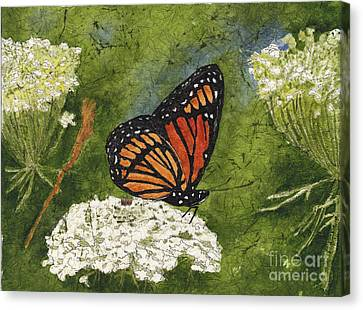 Viceroy Butterfly On Queen Anne's Lace Watercolor Batik Canvas Print by Conni Schaftenaar