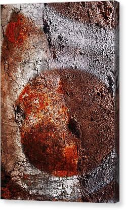 Vicolo Della Minerva Canvas Print by Tommaso Leto