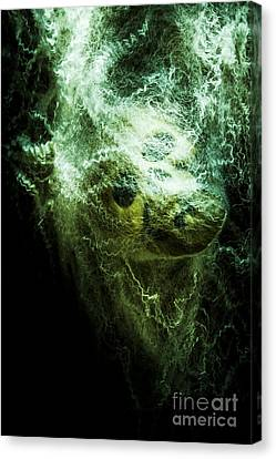 Victim Of Prey Canvas Print by Jorgo Photography - Wall Art Gallery