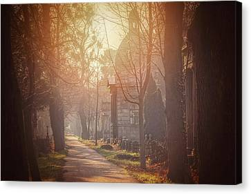 Vienna Zentralfriedhof In Winter  Canvas Print
