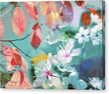 Canvas Print featuring the photograph Viento De Primavera by Alfonso Garcia