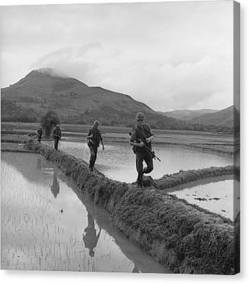 Tntar Canvas Print - Vietnam War. Us Marines Move Along Rice by Everett