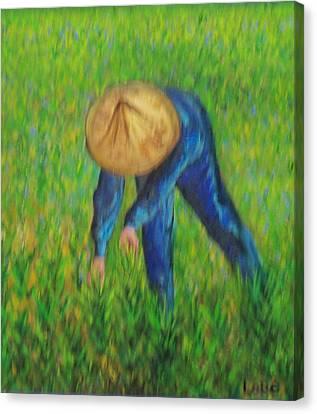 Vietnamese Rice Planter  Canvas Print