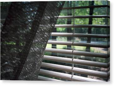 Canvas Print featuring the photograph View From A Window by Wanda Brandon