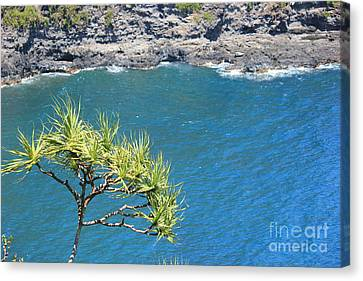Canvas Print featuring the photograph View From Above by Wilko Van de Kamp