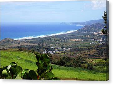 Canvas Print featuring the photograph View From Cherry Hill, Barbados by Kurt Van Wagner