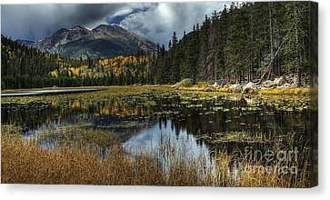 View From Cub Lake Canvas Print by Pete Hellmann