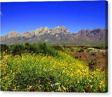 View From Dripping Springs Rd Canvas Print by Kurt Van Wagner