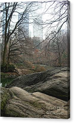 Canvas Print featuring the photograph View From Rocks by Sandy Moulder