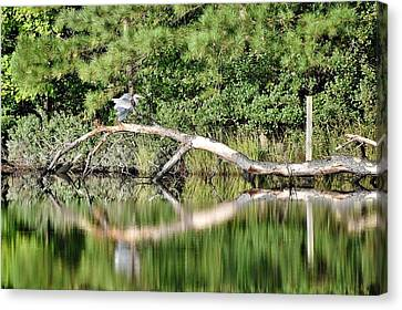 View From Shell Mill Road Canvas Print by Kim Bemis