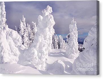 View From Two Top Mountain Loop Trail Canvas Print by Thomas R Fletcher