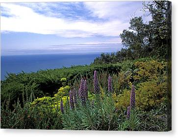 View From Ventana Big Sur Canvas Print by Kathy Yates
