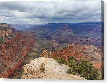 Canvas Print featuring the photograph View From Yaki Point by Beverly Parks