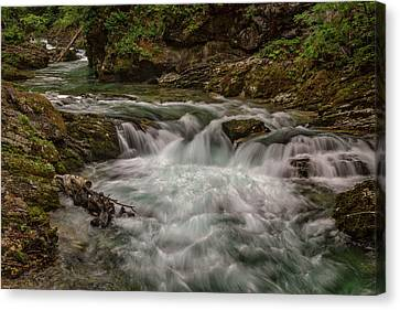 Canvas Print featuring the photograph View In Vintgar Gorge #2 - Slovenia by Stuart Litoff