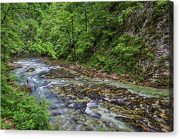 Canvas Print featuring the photograph View In Vintgar Gorge - Slovenia by Stuart Litoff