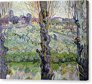 View Of Arles Canvas Print by Vincent Van Gogh