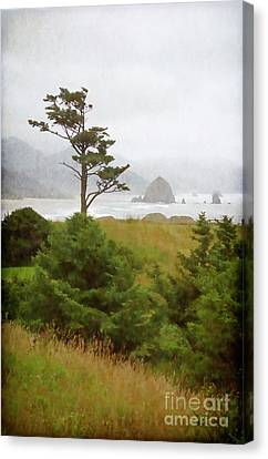 View Of Cannon Beach In The Fog Canvas Print