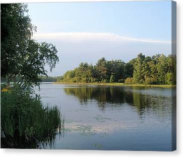 Canvas Print featuring the photograph View Of Hamlin Lake by Beth Akerman