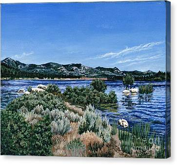 View Of Lake Hemet Canvas Print