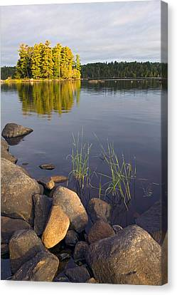 Boundary Waters Canvas Print - View Of Small Island From Rocky Shore by Panoramic Images