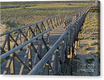 View Of The Wooden Bridge In Quinta Do Lago Canvas Print
