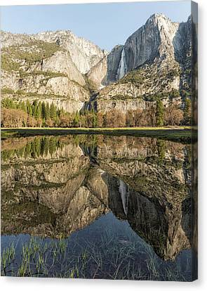 View Of Yosemite Falls From Cook's Meadow Canvas Print