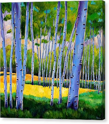 Rocky Mountain Canvas Print - View Through Aspen by Johnathan Harris