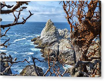 Point Lobos State Canvas Print - View To A Rock by Joseph S Giacalone