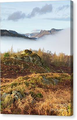 View Towards The Langdales From Holme Fell Canvas Print
