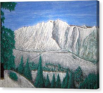 Viewfrom Spruces Canvas Print by Michael Cuozzo