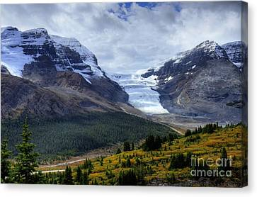Views Hiking Wilcox Pass 2 Canvas Print by Wayne Moran