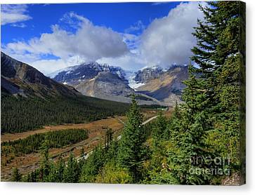 Views Hiking Wilcox Pass1 Canvas Print by Wayne Moran