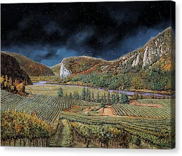 Vigne Nella Notte Canvas Print by Guido Borelli