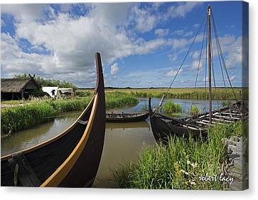 Viking Boats Canvas Print by Robert Lacy