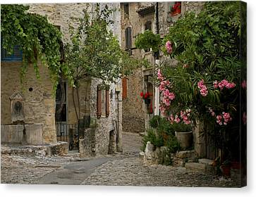 Romaine Canvas Print - Village Walk by Joe Bonita