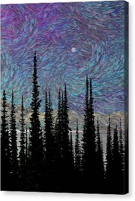 Vincent's Dream Canvas Print by Ed Hall