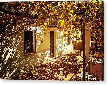 Vine-covered Patio. Andalusia. Spain Canvas Print by Jenny Rainbow