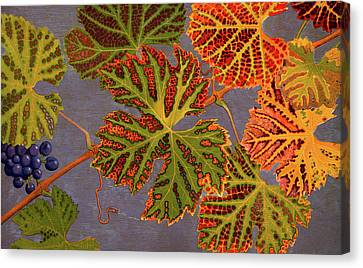 Vine Leaves And Ripened Grapes Canvas Print by Philippe Robert