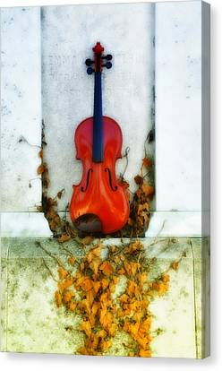 Vines And Violin Canvas Print by Bill Cannon