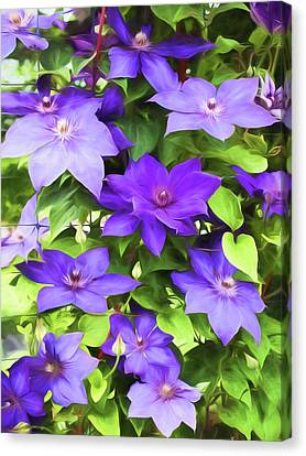 Vines Of Purple Clematis - Painterly Canvas Print by Barbara McMahon