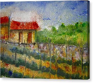 Vineyard Canvas Print by Anne Duke