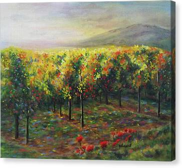 Vineyard Glow Canvas Print by Becky Chappell