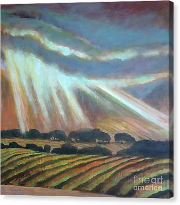 Vineyard Rain Canvas Print by Kip Decker