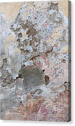 Vintage Abstract I Canvas Print by Elena Elisseeva