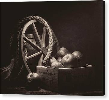 Vintage Apple Basket Still Life Canvas Print by Tom Mc Nemar