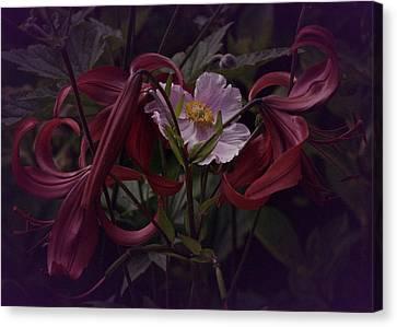 Vintage Asiatic Lilies  Canvas Print by Richard Cummings