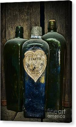 Vintage Case Gin Bottles Canvas Print
